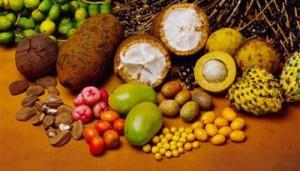 terapia-gerson-frutas-300x171