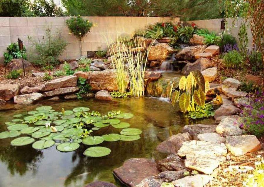 Estanques en tu jardín de verano